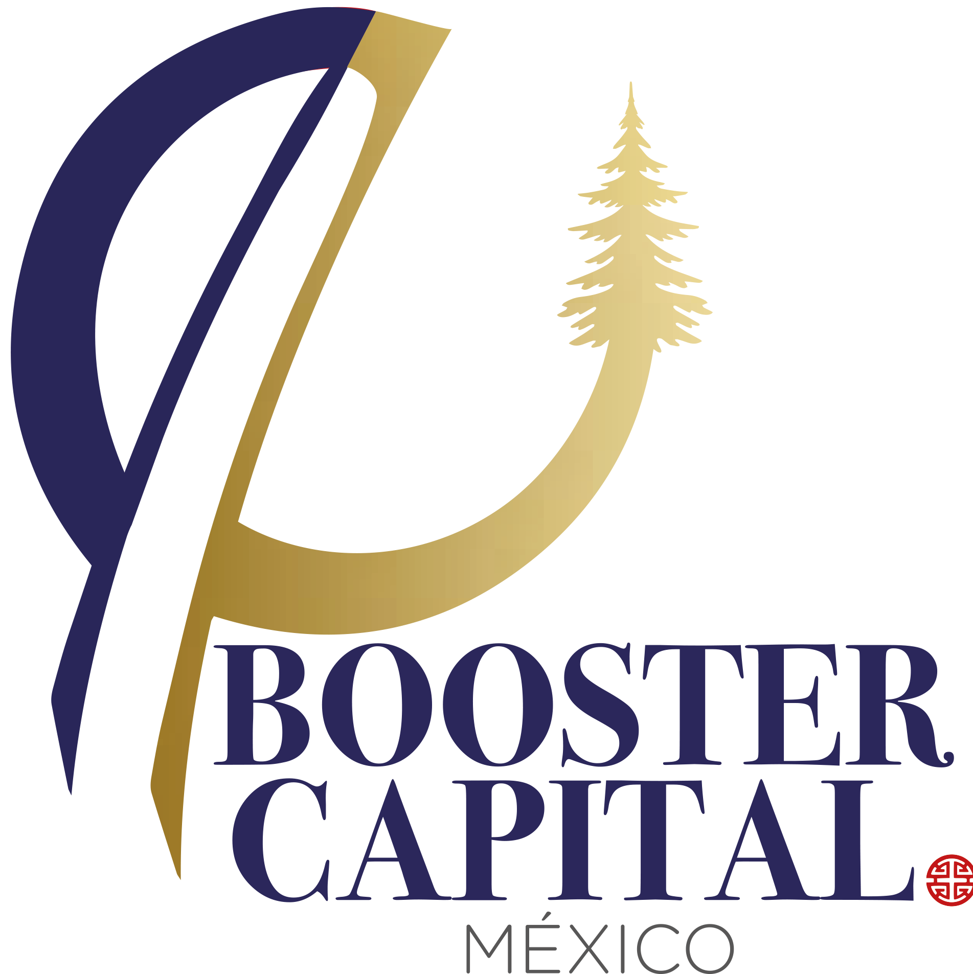 Booster Capital